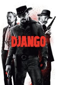 Django lektor pl