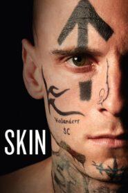 Skin lektor pl