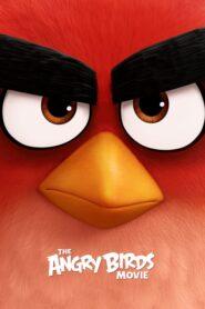 Angry Birds: Film lektor pl