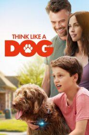 Think Like a Dog lektor pl