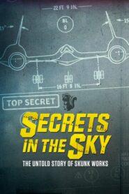 Secrets in the Sky: The Untold Story of Skunk Works lektor pl