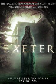 Exeter lektor pl