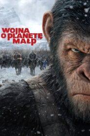 Wojna o planetę małp lektor pl