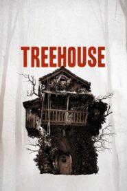Treehouse lektor pl