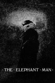 Człowiek słoń lektor pl
