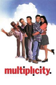 Multiplicity lektor pl