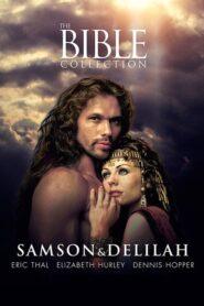 Samson and Delilah lektor pl