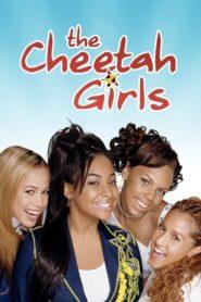 Dziewczyny Cheetah lektor pl