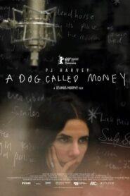 A Dog Called Money lektor pl