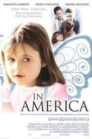 In America lektor pl