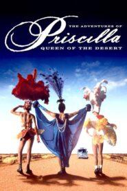 Priscilla, królowa pustyni lektor pl
