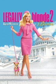 Legalna blondynka 2 lektor pl