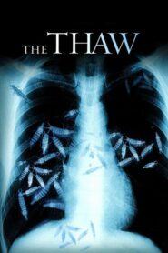 The Thaw lektor pl