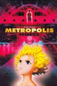 Metropolis lektor pl