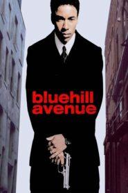 Blue Hill Avenue lektor pl