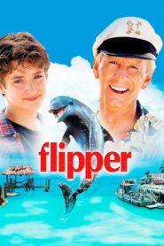 Flipper lektor pl