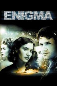 Enigma lektor pl