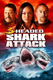 Trójgłowy rekin atakuje lektor pl