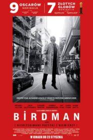 Birdman lektor pl