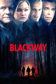 Blackway lektor pl