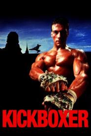 Kickboxer lektor pl