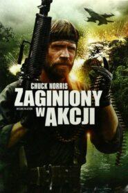 Zaginiony w Akcji lektor pl