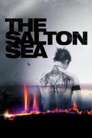 Jezioro Salton lektor pl