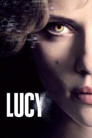 Lucy lektor pl
