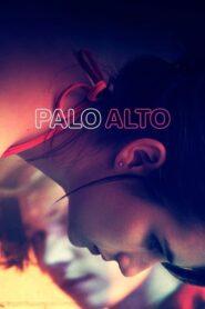 Palo Alto lektor pl