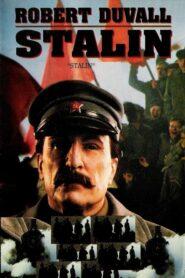Stalin lektor pl
