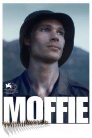Moffie lektor pl