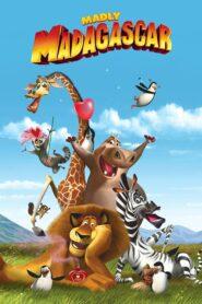 Zakochany Madagaskar lektor pl
