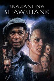 Skazani na Shawshank lektor pl