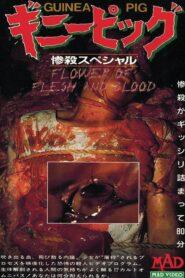 Królik doświadczalny 2: Kwiat ciała i krwi lektor pl