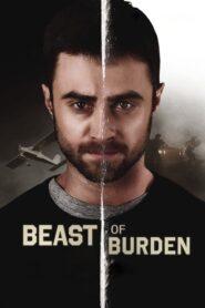 Beast of Burden lektor pl