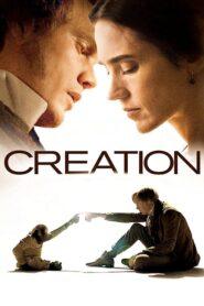 Creation lektor pl
