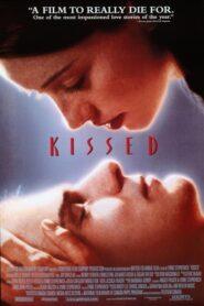 Kissed lektor pl