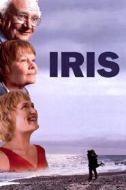 Iris lektor pl