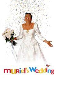 Muriel's Wedding lektor pl
