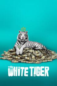 Biały tygrys lektor pl