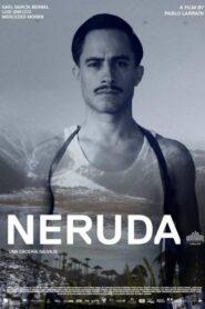 Neruda lektor pl