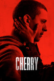 Cherry lektor pl