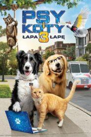 Psy i koty 3: Łapa w łapę lektor pl